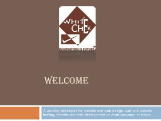 Website Development, Best Website Design Company in Jaipur