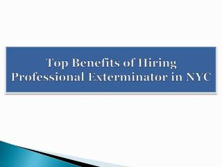 Top Benefits of Hiring Professional Exterminator in NYC