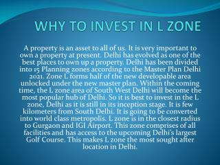 Why to invest in l zone