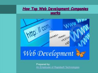 How Top Web Development Companies works