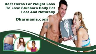 Best Herbs For Weight Loss To Lose Stubborn Body Fat Fast And Naturally