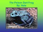 The Poison Dart Frog By: Nate