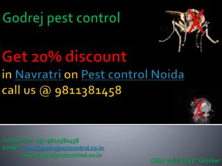 Get 20% discount in Navratri on Pest control Noida