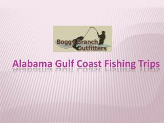 Alabama Gulf Coast Fishing Trips