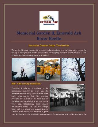 Memorial Garden IL Emerald Ash Borer Beetle