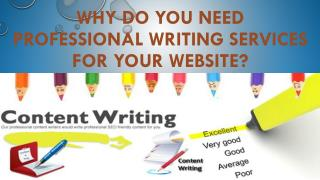 Why do You Need Professional Writing Services for Your Website?