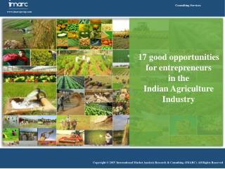 Indian Agriculture Industry Opportunities for Entrepreneurs