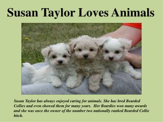 Susan Taylor Loves Animals