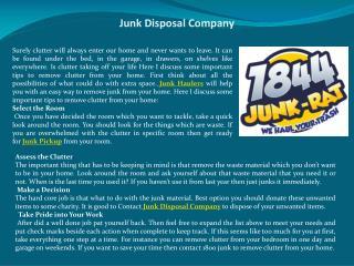 Junk Disposal Company