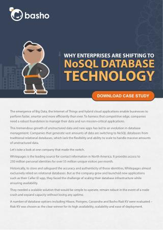 Basho: get a competitive edge with NoSQL databases technology