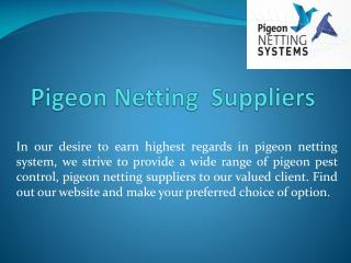 Pigeon Netting Suppliers