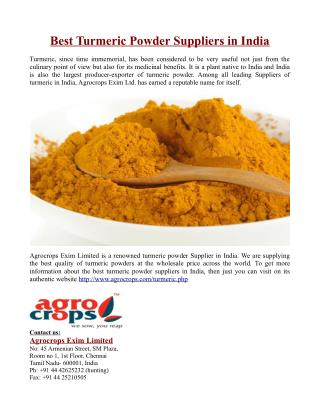 Best Turmeric Powder Suppliers in India