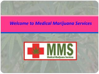 Search Medical Marijuana Doctors in Ontario
