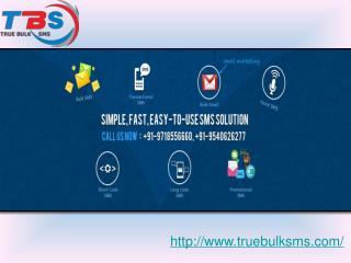 True Bulk SMS
