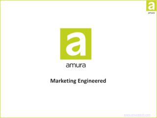 Amura Marketing Technologies - Digital Marketing Agency
