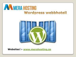 Letar du efter Wordpress webbhotell?