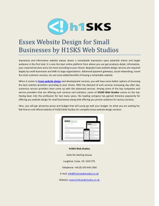 Essex Website Design for Small Businesses by H1SKS Web Studios