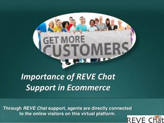 Importance of REVE Chat Support in Ecommerce