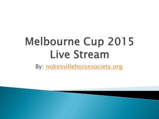 2015 Melbourne Cup Horses