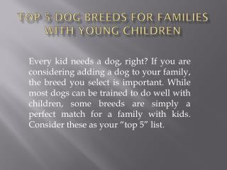 Top 5 Dog Breeds For Families With Young Children
