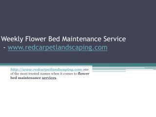 Weekly Flower Bed Maintenance Service - www.redcarpetlandscaping.com