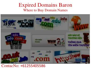 Expired Domains Baron - How to Buy an Expired Domain