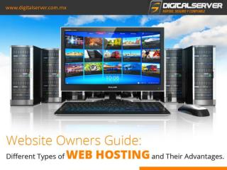 Types of Hosting Plans and Their Advantages | DigitalServer