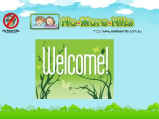 No more nits for Head Lice Removal | Nits Removal & Treatment