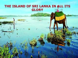 The Island of Sri Lanka in All its Glory - Thomas Cook