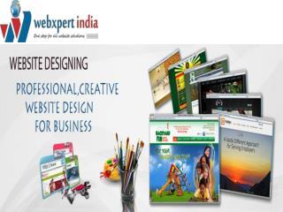 Website Designing Company in Delhi, Web Development Company in Delhi