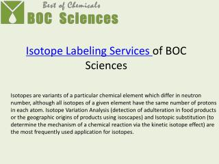 Isotope Labeling Services