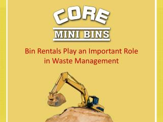 Bin Rentals Play an Important Role in Waste Management