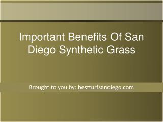 Important Benefits Of San Diego Synthetic Grass