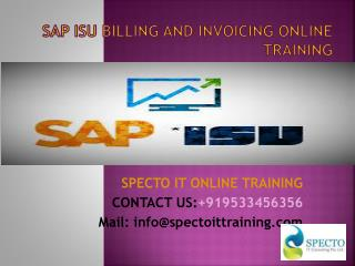 sap isu billing and invoicing online training in dubai
