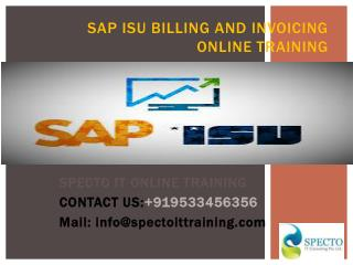 sap isu billing and invoicing online training in pune