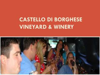 Castello Di Borghese Vineyard & Winery