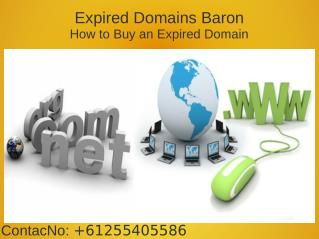 Expired Domain List From Expired Domains Baron