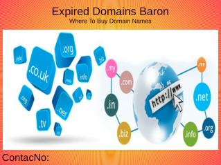 Expired Domain Names From Expired Domains Baron