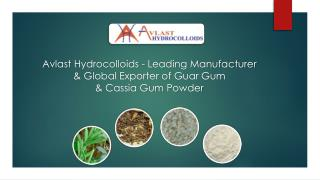 Avlast Hydrocolloids - Leading Manufacturer & Global Exporter of Guar Gum & Cassia Powder
