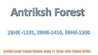 Antriksh Forest