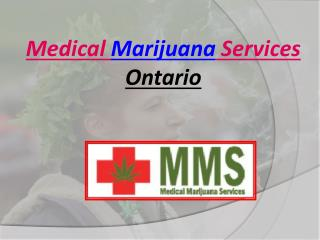 How to Use Cannabis Plant for Medical Services