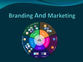 Branding and Marketing Development