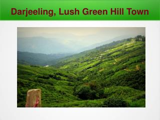 5 Star hotels in Darjeeling