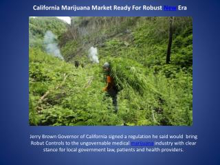 California Marijuana Market Ready For Robust New Era