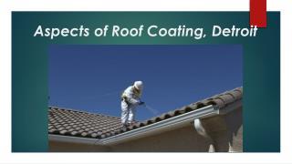 Aspects of Roof Coating, Detroit
