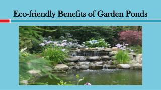 4 Eco-friendly Benefits of Garden Ponds