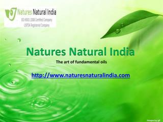 Buy Certified Natural Essential Oils at Naturesnaturalindia