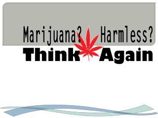 Youth marijuana harmless think again