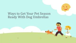 Ways to Get Your Pet Season Ready With Dog Umbrellas