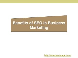 Benefits of SEO in Business Marketing